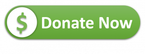 Donate Now Button - Link to charity site