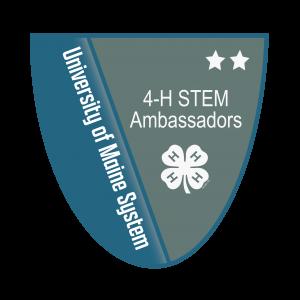 Link to 4-H STEM Ambassador Level 2 Badge (External Site)
