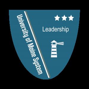 Link to Leadership Level 3 Badge (External Site)